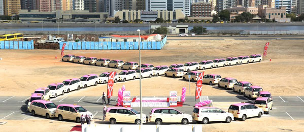 Pink Drive Campaign